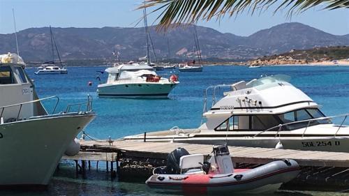 escursioni-experience-sardinia-boat-tour-isola-tavolara (1)