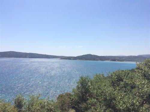 escursioni-experience-sardinia-boat-tour-isola-tavolara (11)