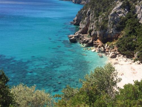 escursioni-experience-sardinia-boat-tour-isola-tavolara (23)