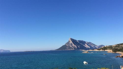 escursioni-experience-sardinia-boat-tour-isola-tavolara (25)