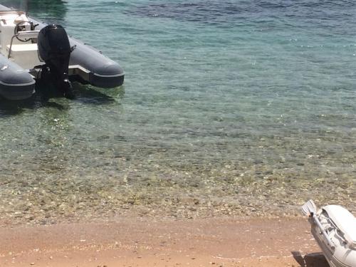 escursioni-experience-sardinia-boat-tour-isola-tavolara (27)