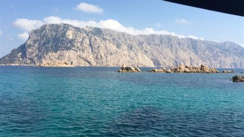 escursioni-experience-sardinia-boat-tour-isola-tavolara (28)