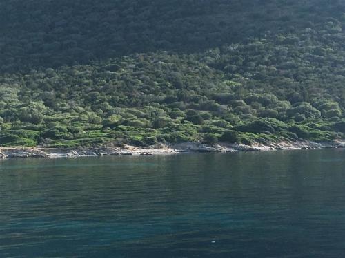 escursioni-experience-sardinia-boat-tour-isola-tavolara (33)