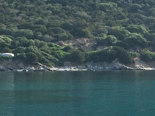 escursioni-experience-sardinia-boat-tour-isola-tavolara (34)