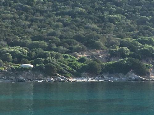 escursioni-experience-sardinia-boat-tour-isola-tavolara (36)