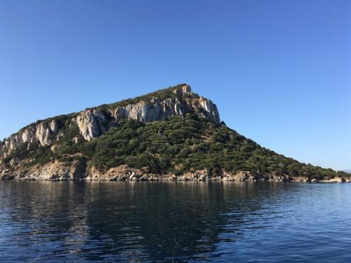 escursioni-experience-sardinia-boat-tour-isola-tavolara (40)