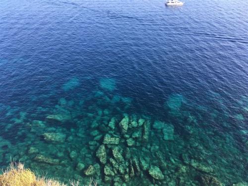 escursioni-experience-sardinia-boat-tour-isola-tavolara (44)