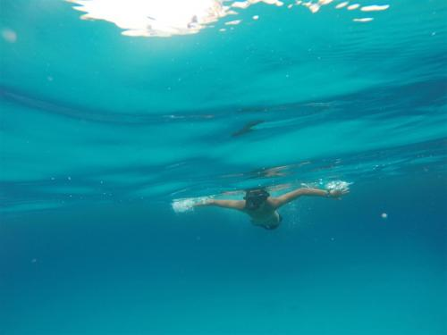 escursioni-experience-sardinia-boat-tour-isola-tavolara (5)