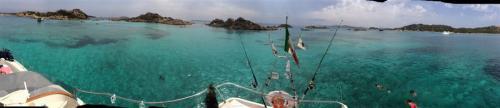 escursioni-experience-sardinia-boat-tour-isola-tavolara (9)